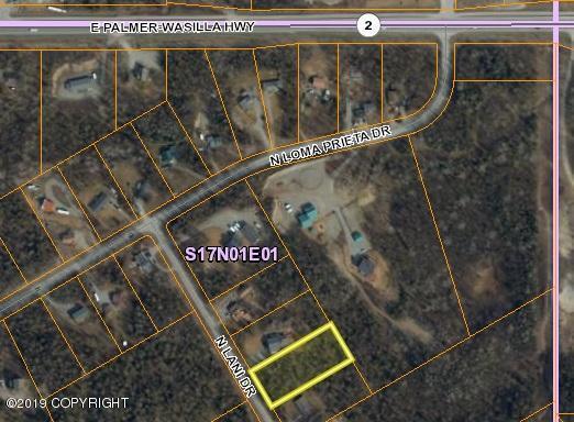 1521 Lani Drive, Palmer, AK 99645 (MLS #19-10439) :: Roy Briley Real Estate Group