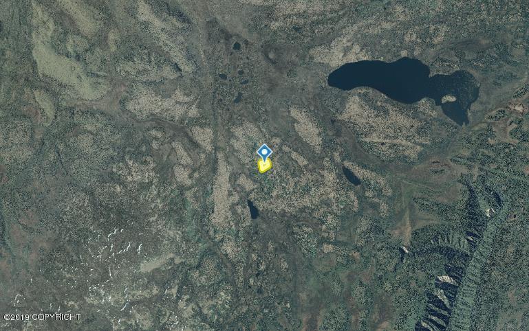 000 South Caribou Lake - Photo 1