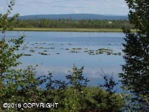 15755 W Loon Cove Avenue, Big Lake, AK 99652 (MLS #19-10976) :: RMG Real Estate Network | Keller Williams Realty Alaska Group