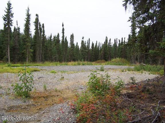 L7A B4 Johnson's Drive, Soldotna, AK 99669 (MLS #19-11766) :: Team Dimmick