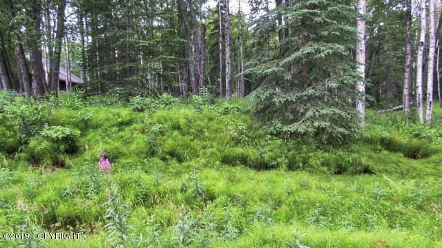 Lot 1D B3 Meeks Street, Soldotna, AK 99669 (MLS #19-11841) :: RMG Real Estate Network | Keller Williams Realty Alaska Group