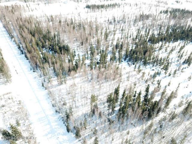 L2220B Copper Street, North Pole, AK 99705 (MLS #19-12332) :: Roy Briley Real Estate Group