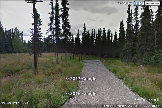 L20 B3 Brighton Drive, Fairbanks, AK 99712 (MLS #19-12482) :: RMG Real Estate Network | Keller Williams Realty Alaska Group