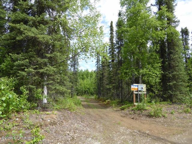 16825 E Ed's Road, Talkeetna, AK 99676 (MLS #19-12930) :: RMG Real Estate Network | Keller Williams Realty Alaska Group