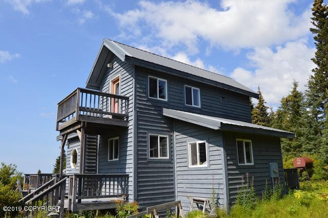 58466 Skyline Drive, Homer, AK 99603 (MLS #19-13961) :: Roy Briley Real Estate Group