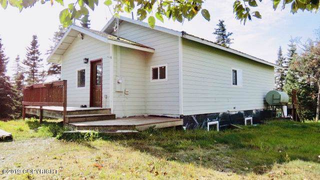 33965 Sprucegate Road, Anchor Point, AK 99556 (MLS #19-15912) :: RMG Real Estate Network | Keller Williams Realty Alaska Group