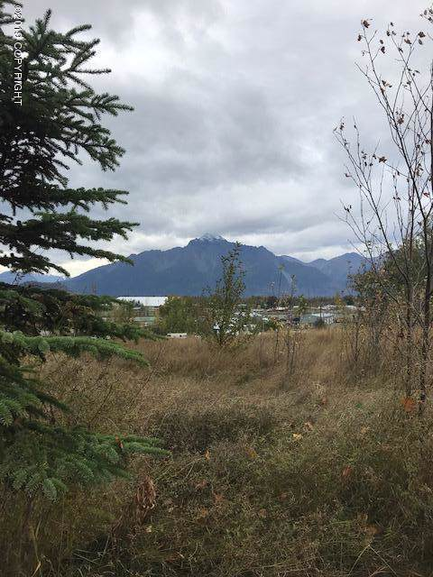 12501 E Helen Drive, Palmer, AK 99645 (MLS #19-16109) :: Core Real Estate Group
