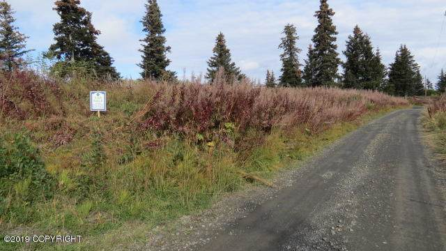 000 Linda Lane, Homer, AK 99603 (MLS #19-16342) :: RMG Real Estate Network | Keller Williams Realty Alaska Group