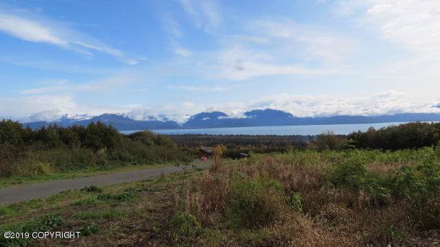 000 Glacier View Road, Homer, AK 99603 (MLS #19-16685) :: RMG Real Estate Network | Keller Williams Realty Alaska Group