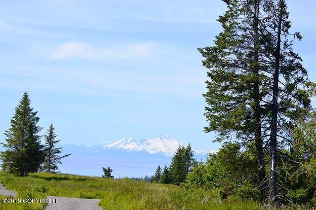 41586 Ridge Circle, Homer, AK 99603 (MLS #19-16745) :: Wolf Real Estate Professionals