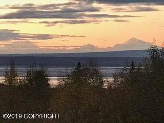 16109 Parksville Drive, Chugiak, AK 99567 (MLS #19-17024) :: RMG Real Estate Network | Keller Williams Realty Alaska Group