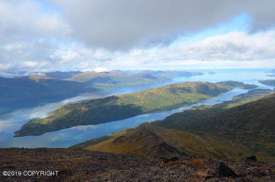 L3 Amook Island, Kodiak, AK 99615 (MLS #19-18753) :: RMG Real Estate Network | Keller Williams Realty Alaska Group