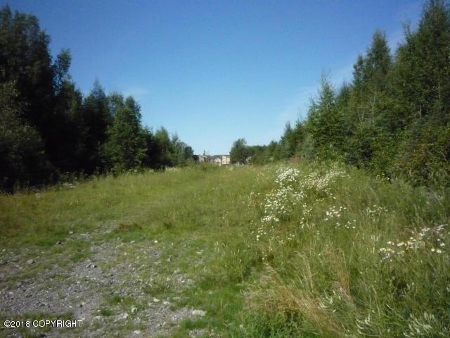 1840 E 73rd Avenue, Anchorage, AK 99507 (MLS #19-2251) :: Core Real Estate Group