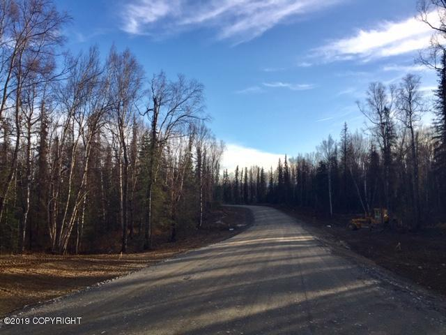 L7 B1 W Creeksedge Drive, Wasilla, AK 99623 (MLS #19-2495) :: RMG Real Estate Network | Keller Williams Realty Alaska Group