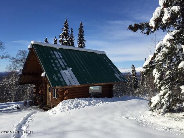 A003 N Denali View Drive, Remote, AK 99000 (MLS #19-2517) :: RMG Real Estate Network | Keller Williams Realty Alaska Group