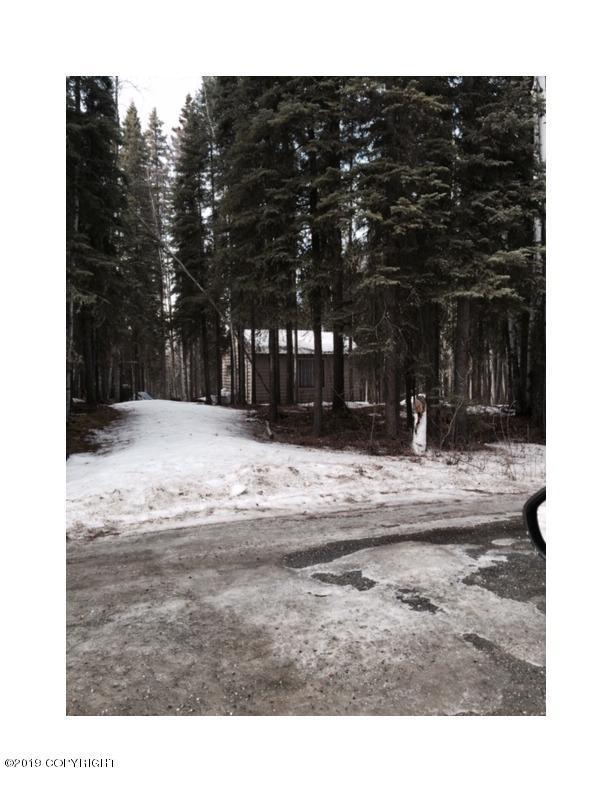 9823 Salcha Drive, Salcha, AK 99714 (MLS #19-3128) :: The Adrian Jaime Group | Keller Williams Realty Alaska