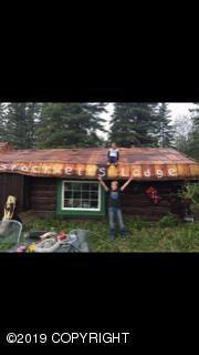 000 Clearwater Creek, Delta Junction, AK 99737 (MLS #19-3356) :: The Adrian Jaime Group   Keller Williams Realty Alaska