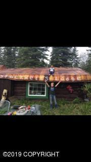 000 Clearwater River, Delta Junction, AK 99737 (MLS #19-3393) :: The Adrian Jaime Group   Keller Williams Realty Alaska