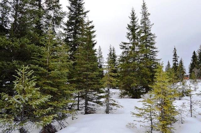 39355 Sterling Highway, Homer, AK 99603 (MLS #19-3777) :: RMG Real Estate Network | Keller Williams Realty Alaska Group