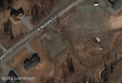 7848 W Mustafa Circle, Wasilla, AK 99654 (MLS #19-4038) :: Team Dimmick