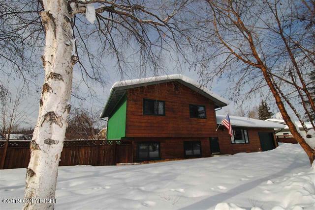 1276 Gold Rush Drive, Fairbanks, AK 99709 (MLS #19-4742) :: Roy Briley Real Estate Group
