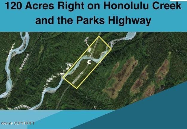 000 Parks Highway, Cantwell, AK 99729 (MLS #19-5173) :: Roy Briley Real Estate Group