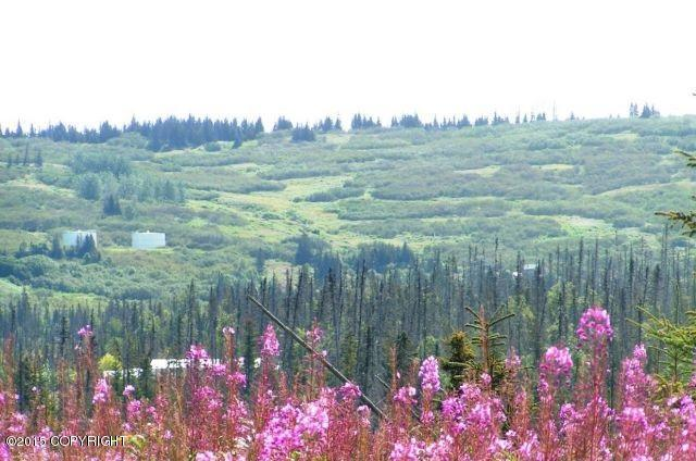 L11-13 Berezka Drive, Nikolaevsk, AK 99556 (MLS #19-5360) :: RMG Real Estate Network | Keller Williams Realty Alaska Group
