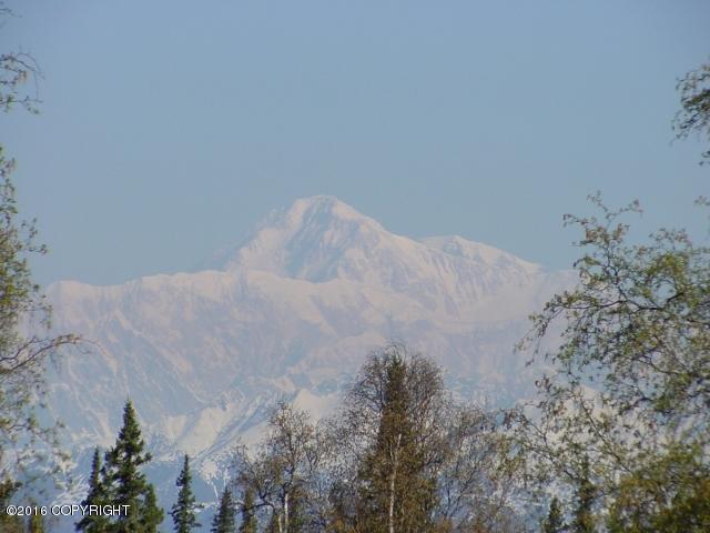 A030 N Denali Road, Remote, AK 99000 (MLS #19-5897) :: RMG Real Estate Network | Keller Williams Realty Alaska Group