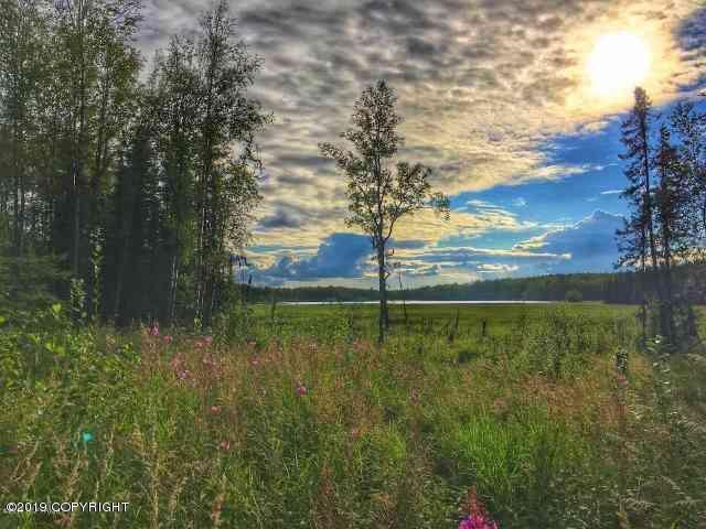 1864 N Pittman Road, Wasilla, AK 99623 (MLS #19-6140) :: Synergy Home Team