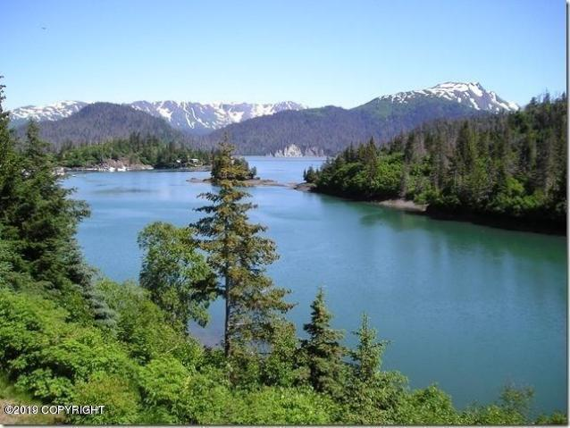 L4 Halibut Cove, Halibut Cove, AK 99603 (MLS #19-7117) :: Wolf Real Estate Professionals