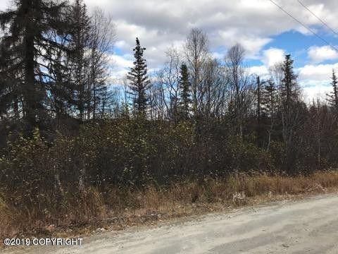 12867 Snowberry Road, Willow, AK 99688 (MLS #19-7677) :: RMG Real Estate Network | Keller Williams Realty Alaska Group