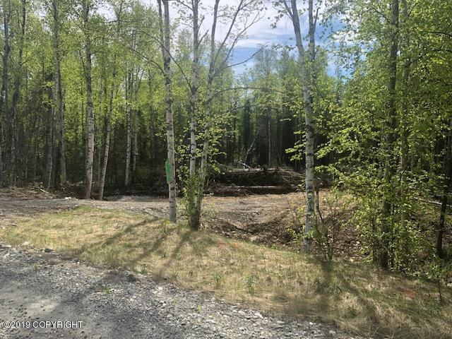 2706 N Windy Bottom Road, Wasilla, AK 99623 (MLS #19-8194) :: RMG Real Estate Network | Keller Williams Realty Alaska Group