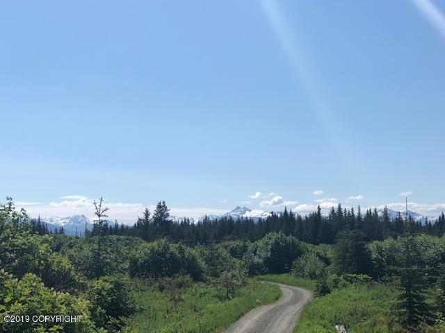 4750 Tundra Rose Road, Homer, AK 99603 (MLS #19-9555) :: Roy Briley Real Estate Group