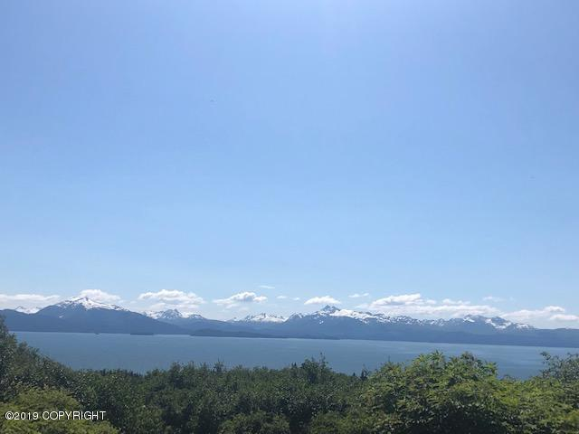 700 W Fairview Avenue, Homer, AK 99603 (MLS #19-9931) :: Team Dimmick