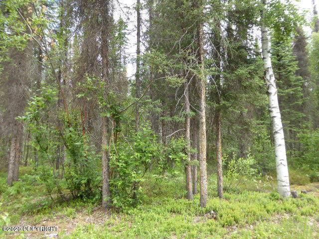 16265 E Birch Tree Circle, Talkeetna, AK 99676 (MLS #20-10072) :: Wolf Real Estate Professionals