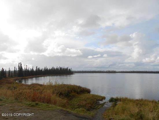 40207 W Krantz Road, Willow, AK 99688 (MLS #20-10173) :: RMG Real Estate Network | Keller Williams Realty Alaska Group