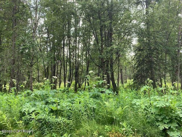 L9 Bk 6 Mark Boulevard, Nikiski/North Kenai, AK 99635 (MLS #20-10300) :: Alaska Realty Experts