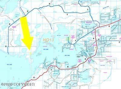 3710 S Asbury Court, Big Lake, AK 99652 (MLS #20-10524) :: Wolf Real Estate Professionals