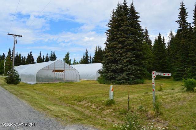 34200 N Fork Road, Anchor Point, AK 99556 (MLS #20-10658) :: Alaska Realty Experts