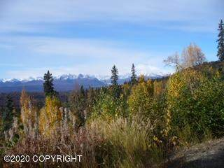 1218 N Evelyn May Lane, Talkeetna, AK 99676 (MLS #20-10743) :: Team Dimmick