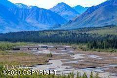Parcel B Na F-13210 Us Survey 9951, Nenana, AK 99760 (MLS #20-10750) :: Wolf Real Estate Professionals