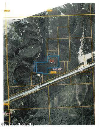 000 W Glenn Highway, Chickaloon, AK 99674 (MLS #20-10844) :: RMG Real Estate Network | Keller Williams Realty Alaska Group