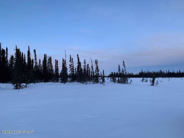 Tr B No Road, Trapper Creek, AK 99683 (MLS #20-1135) :: Wolf Real Estate Professionals