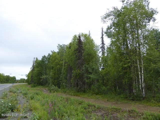 000 E Ymca Road, Talkeetna, AK 99676 (MLS #20-11511) :: RMG Real Estate Network | Keller Williams Realty Alaska Group