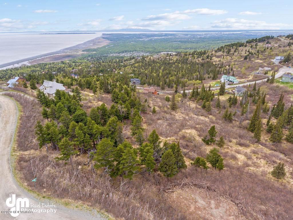 7135 Big Mountain Drive - Photo 1