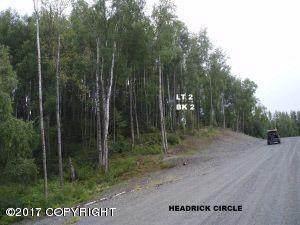 6205 S Headrick Circle, Big Lake, AK 99652 (MLS #20-12203) :: Team Dimmick