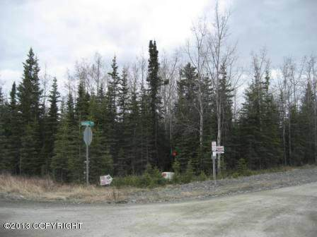 L4 B3 Samsel Road, Sterling, AK 99672 (MLS #20-12516) :: Wolf Real Estate Professionals