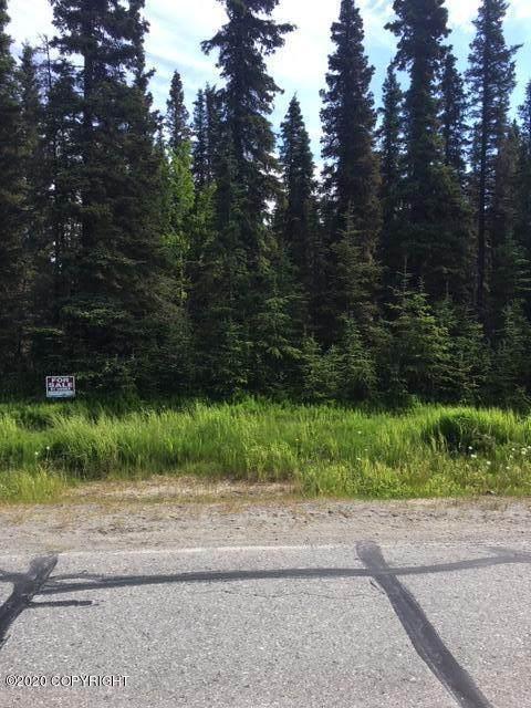 2735 Vip Drive, Kenai, AK 99611 (MLS #20-12823) :: Wolf Real Estate Professionals