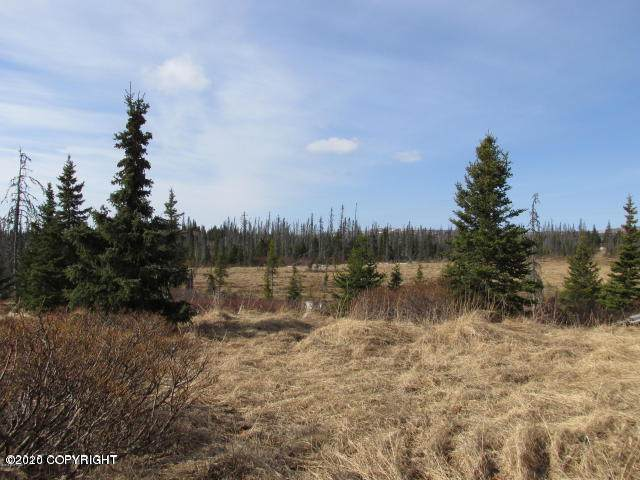 000 Fox Creek, Homer, AK 99603 (MLS #20-13136) :: Wolf Real Estate Professionals