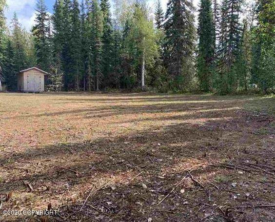 1876 Natazhat Court, North Pole, AK 99705 (MLS #20-13473) :: Wolf Real Estate Professionals